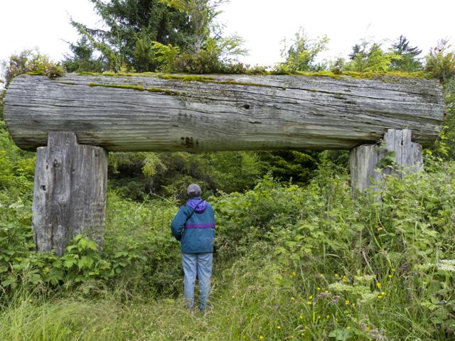 Longhouse beams