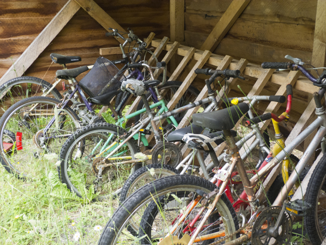 bicycles in a shed