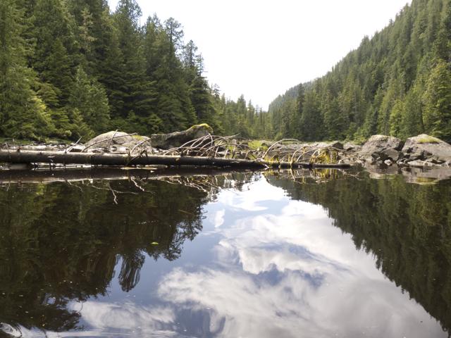 Viner Sound, BC