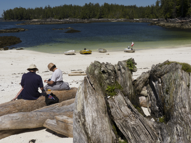 Fury Cove beach picnic