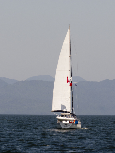 Top Brass sailing in Fitzhugh Sound