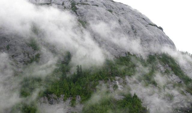 Fiordland granite