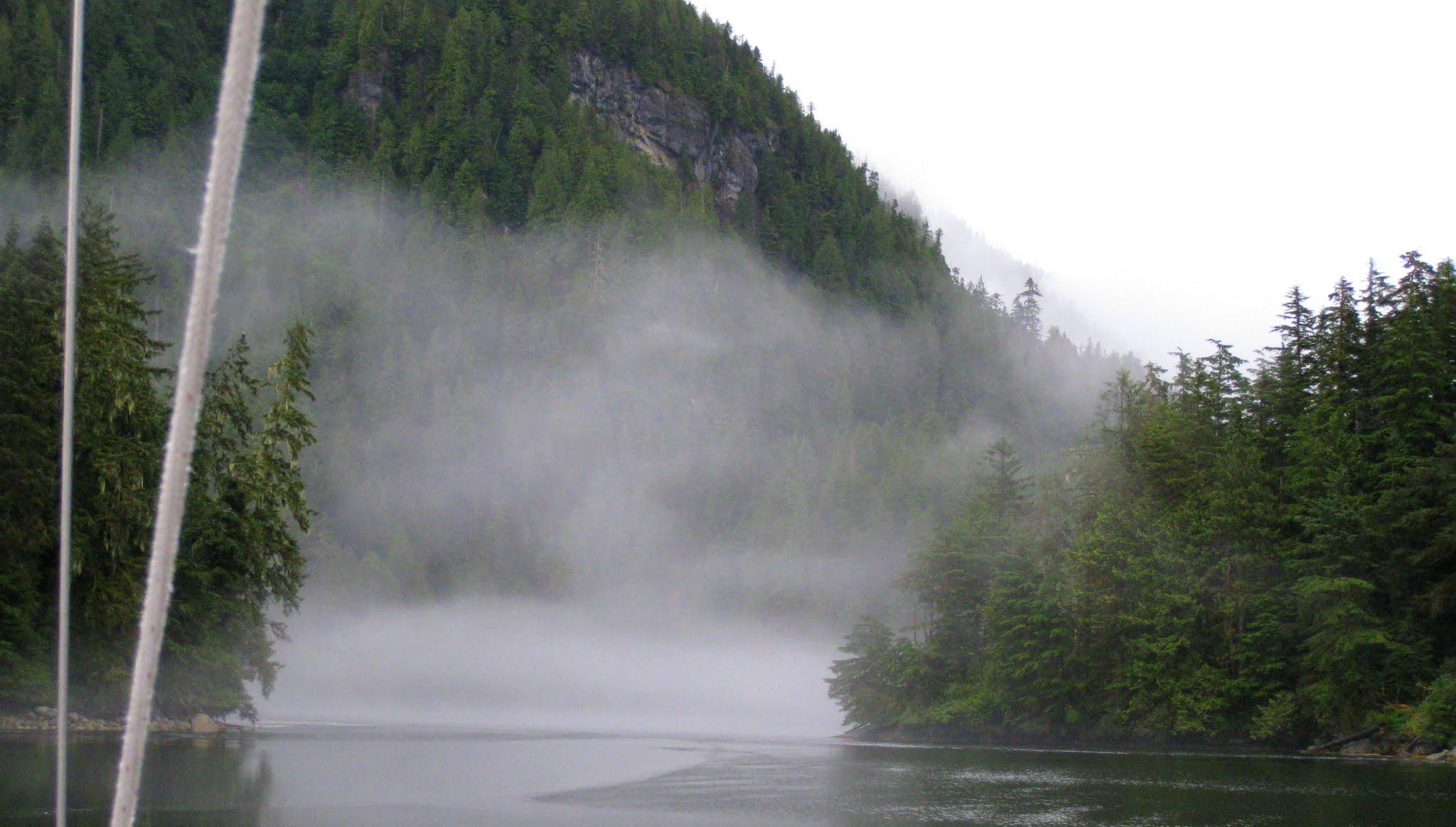 Culpepper Lagoon mist