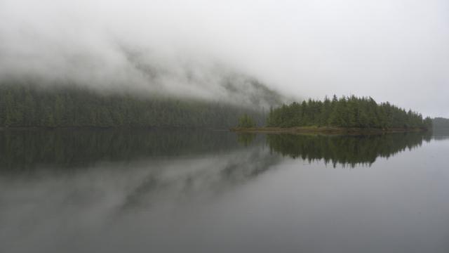 fog near Klemtu