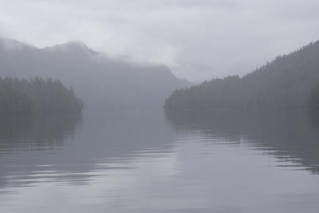 fog closes in over Klewnuggit